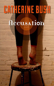 Accusation book cover